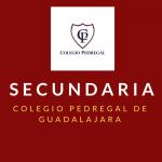SECUNDARIA PEDREGAL