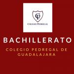 BACHILLERATO PEDREGAL