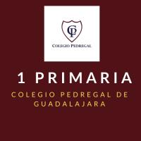 KINDER TERCERO Colegio Pedregal