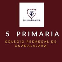 PRIMARIA QUINTO Colegio Pedregal