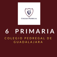 PRIMARIA CUARTO Colegio Pedregal