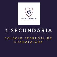 PRIMARIA SEXTO Colegio Pedregal