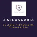 SECUNDARIA SEGUNDO Colegio Pedregal
